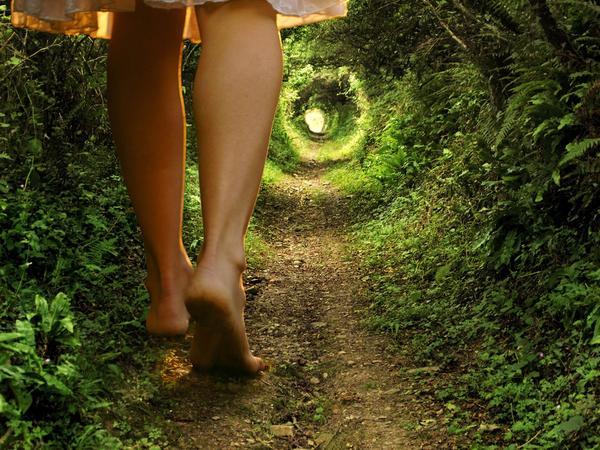 15825 Fairy Tales